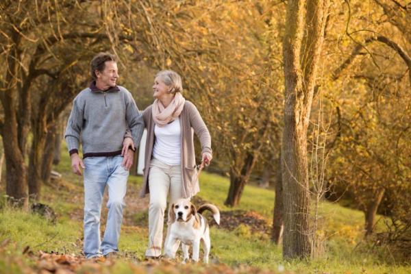 Promener un chien seniors
