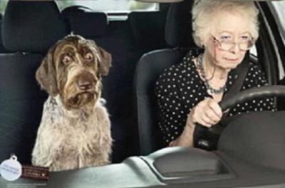 Seniors et la conduite