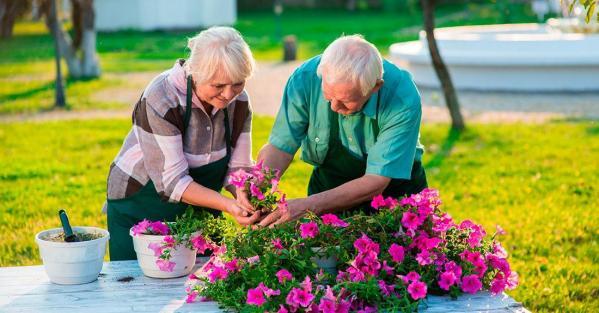 Jardin pour seniors