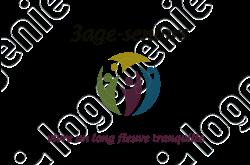 Logo informatique
